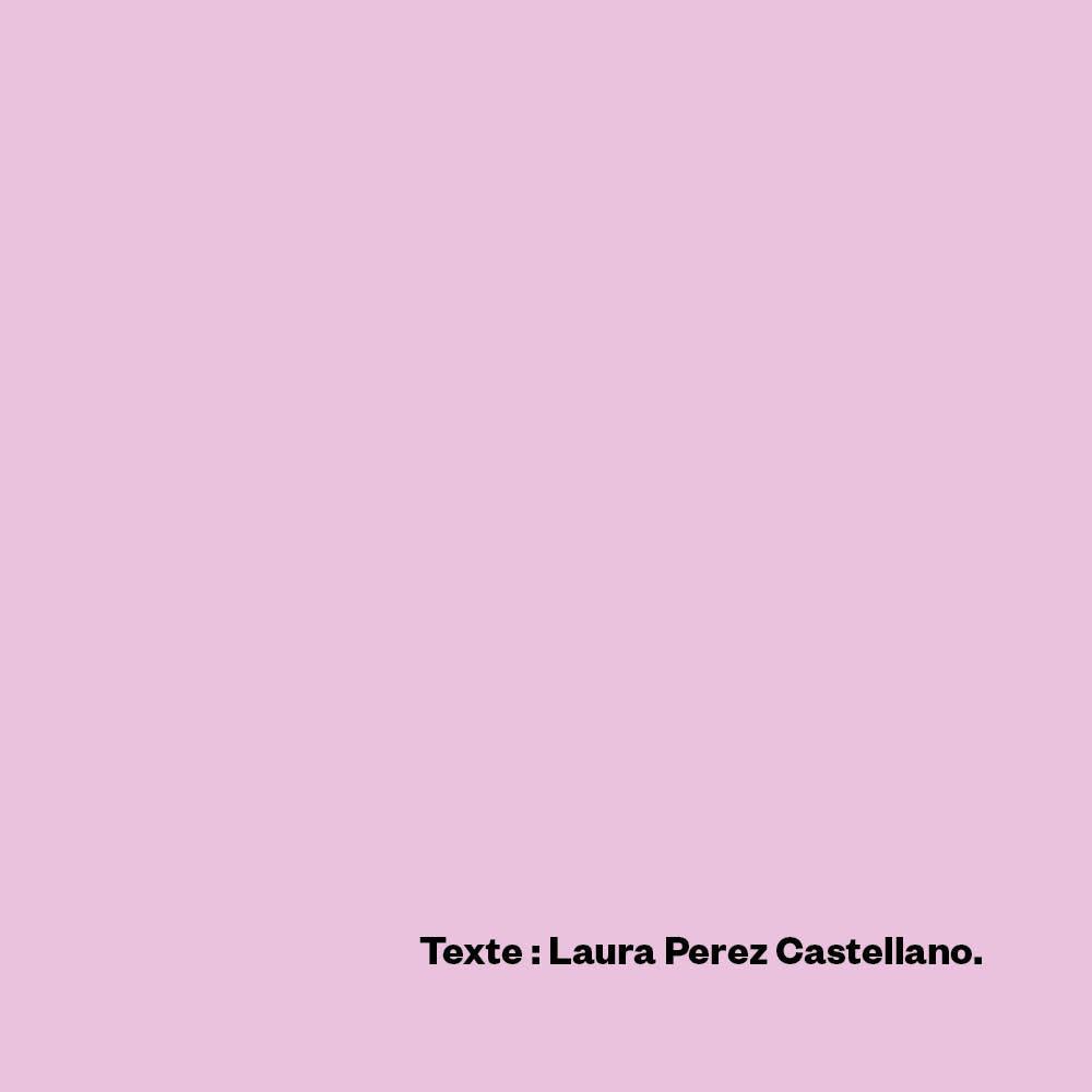 Le travail c'est (extrait), Laura Perez Castellano.
